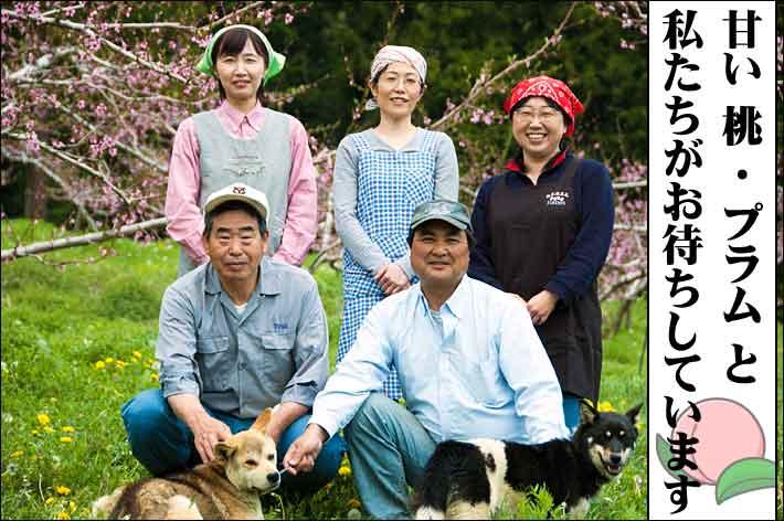 山梨の桃狩りは山の果樹園がオススメ