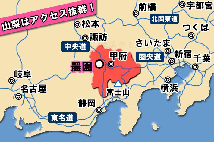 桃狩り園への地図